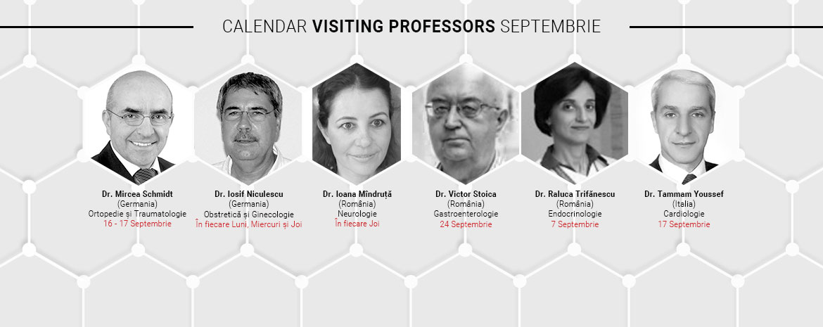 E-Banner_Septembrie-Visiting-Professors_RO